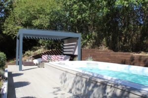 Swim Spa Project Picture